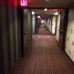 Dim low corridors with ancient carpet