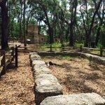 Baynard Plantation Ruins