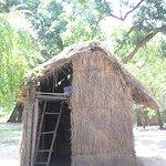 Dungu House