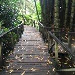 Foto de Jardin Botanico La Laguna