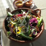 Tasty salad with edible flowers.