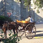 """4.""""Durty Nelly's"""": Irish cart driver & horse wait for business"""