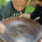 Honing our panning skills before we try for a nugget!