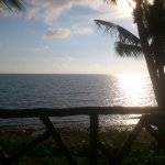 Paradise Palms Resort Photo