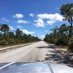 National Key Deer Refuge - Big PIne Key, FL