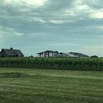 Photo de Inniskillin Wines at the Brae Burn Estate