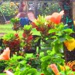 Rain washed serenity at Asokam Beach Resort