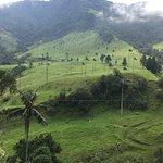 Photo of Bosques de Cocora