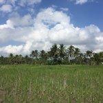 Photo of Bali Breeze Tours