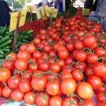 Tomato heaven