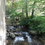 Photo de Sidney James Mountain Lodge