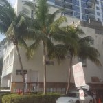 Foto de The Mimosa Hotel