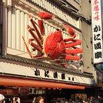 Kanidouraku Dotombori-Honten Photo