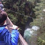 Lynn Canyon Suspension Bridge Foto