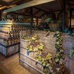 Mercato del vino di Dante Ferretti