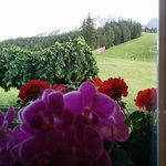 Foto de Hotel Villa Waldheim