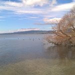 Photo of Lake Rotorua