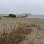 Sea oats and jetty