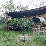 Cort Cottage