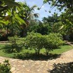 Courtyard to the Casitas.
