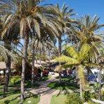 Lush Sub Tropical vegetation really makes the resort look fabulous.