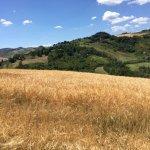 Foto van Freelandia La Valle Dei Caprioli