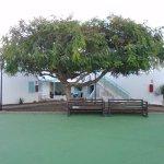 Photo of LABRANDA La Tahona Garden
