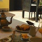 Riad Cocoon Image