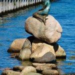 The Little Mermaid Foto