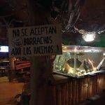 Photo of Jungle Bar Moskkito