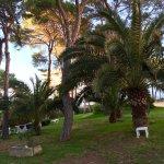 Hotel Riu Playa Park Foto