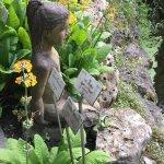Foto de Botanical Garden Kruidtuin