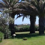 Photo de Cala Rosa Club Hotel