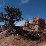 Queen's Garden Trail - remarkable scenery  (2)