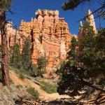 Queen's Garden Trail - remarkable scenery  (7)