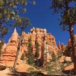 Queen's Garden Trail - remarkable scenery  (8)