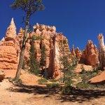 Queen's Garden Trail - remarkable scenery (9)