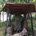 Kangiin Shodendo Temple Foto