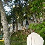 Zdjęcie Horseblock Point Cottages