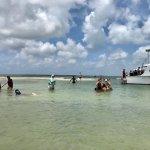Seven Seas Charters Day Tours Photo