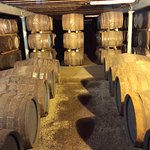 Scotch aging in casks