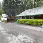 Cedar Lodge Motel-billede