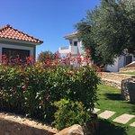 Photo of Kotroni Villas