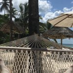 Foto de Blue Oyster Hotel