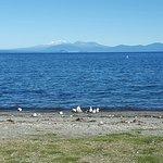 Foto de Hilton Lake Taupo