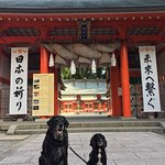 Photo of Kumano Hayatama Taisha