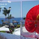 Photo of RedLevel at Gran Melia Palacio de Isora