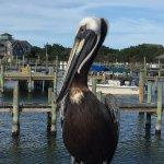 Ocracoke Harbor Inn Foto