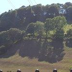 صورة فوتوغرافية لـ Panorama Cottages