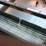 Foto de Ice at the Galleria